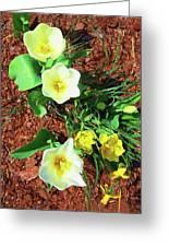 Three White Tulips Painting Greeting Card