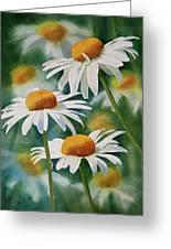 Three Wild Daisies Greeting Card by Sharon Freeman