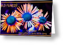 Three Wild Flowers Friendship Greeting Card