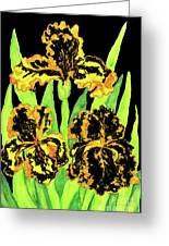 Three Yellow-black Irises, Painting Greeting Card