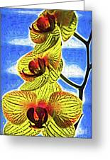 Three Yellow Orchid Blooms Greeting Card