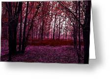Through A Forest Greeting Card