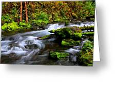 Through The Forest Floor It Flows Greeting Card