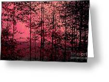 Through The Forest, Rose Greeting Card