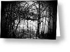 Through The Lens- Black And White Greeting Card