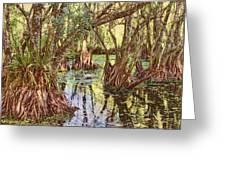 Through The Mangroves Greeting Card