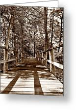 Through The Narrow Path  Greeting Card