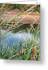 Through The Thickets Greeting Card
