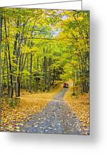 Through Yellow Woods 2 Greeting Card