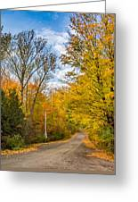 Through Yellow Woods 3 Greeting Card
