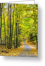 Through Yellow Woods Greeting Card