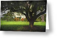 Throw Your Arms Around The World Greeting Card