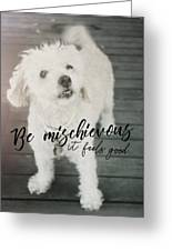 Thumper Dog Quote Greeting Card