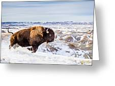 Thunder In The Snow Greeting Card