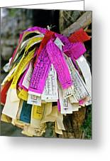 Tibetan Prayer Flags Greeting Card