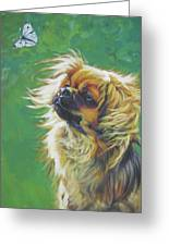 Tibetan Spaniel And Cabbage White Butterfly Greeting Card