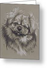 Tibetan Spaniel Greeting Card