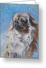 Tibetan Spaniel In Snow Greeting Card