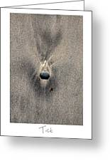 Tick Greeting Card by Peter Tellone
