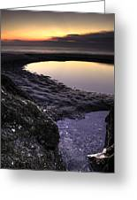 Tidal Pool Reflections Greeting Card