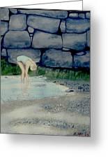 Tidal Pool Treasures Greeting Card