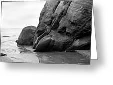Tide Pool Oregon Coast Greeting Card