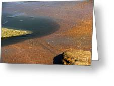 Tide Pool With Coquina Rock Greeting Card