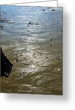 Tides Out After The Storm Greeting Card