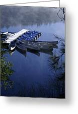 Tied To The Dock Greeting Card