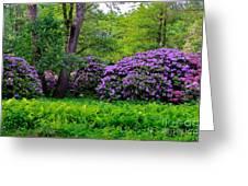 Tiergarten In Spring Greeting Card