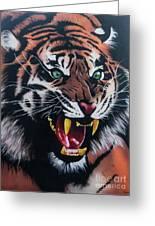 Tigar Snarl Greeting Card