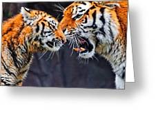 Tiger 05 Greeting Card