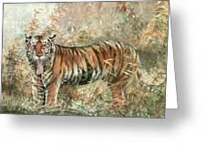 Tiger - 28 Greeting Card