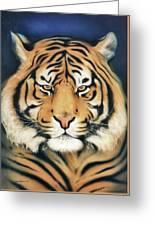 Tiger At Midnight Greeting Card
