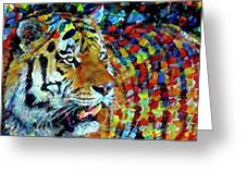 Tiger Big Colors Greeting Card