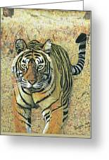 Tiger Burning Bright  Greeting Card