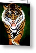 Tiger Charging Greeting Card