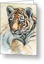 Tiger Cub Portrait 865 Greeting Card