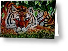 Tiger In Jungle Greeting Card