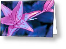 Tiger Lily Abstract Greeting Card