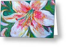 Tiger Lily Passion Greeting Card