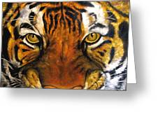 Tiger Mask  Original Oil Painting Greeting Card