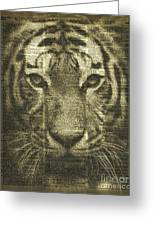 Tiger Over Dictionary Page Greeting Card