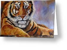 Tiger Resting Greeting Card