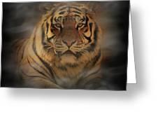 Tiger Greeting Card by Sandy Keeton