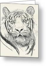 Tigerlily Greeting Card