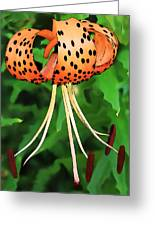 Tigerlily Greeting Card