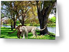 Tigers By The City Greeting Card