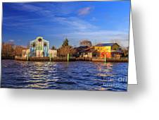 Tigre Delta 019 Greeting Card