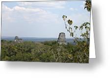 Tikal IIi Greeting Card